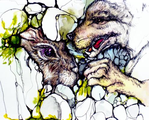 il coniglio Re della foresta
